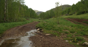 American Fork Canyon OHV Trails